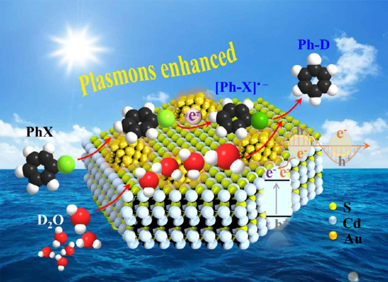 Plasmon-induced chemistry