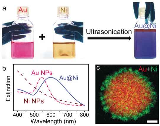 Rational design of bifunctional nanoparticles